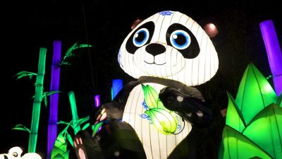 China Light Festival- Ouwehands Dierenpark Rhenen